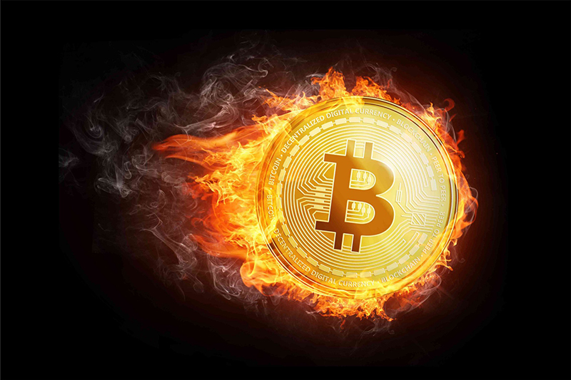 Is the Bitcoin Bull Stock Market Dead? Or just taking a breather?
